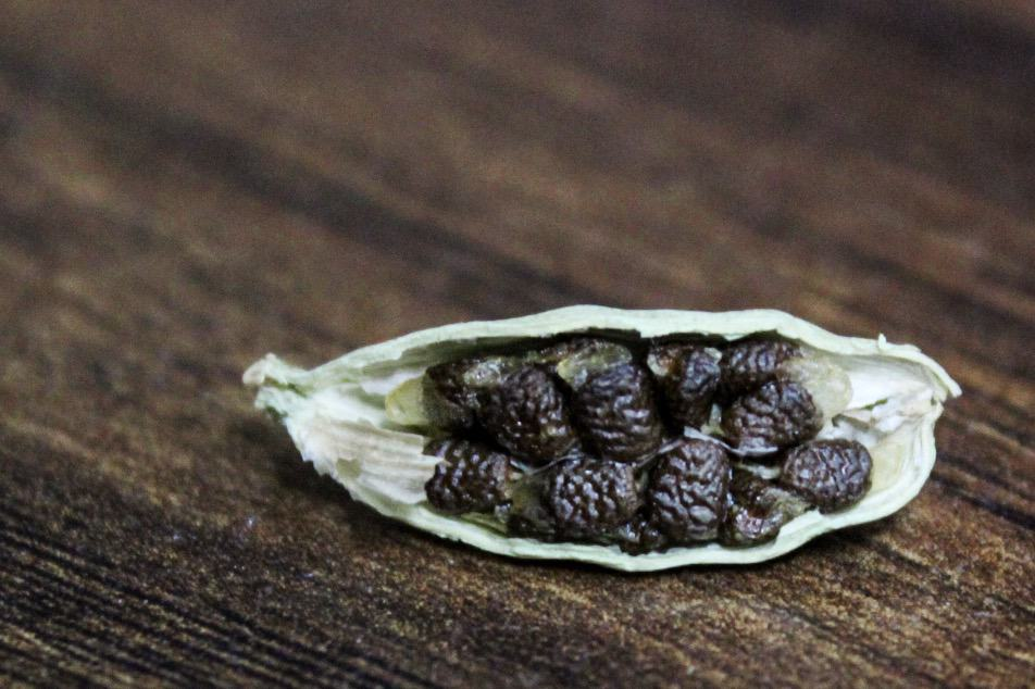 Open cardamom pod with seeds