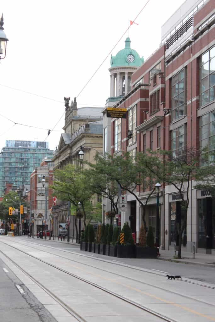 Street in Toronto