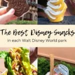 The Top Disney Snacks I Had in Each Park