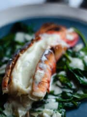 broiled lobster tail with vanilla sauce