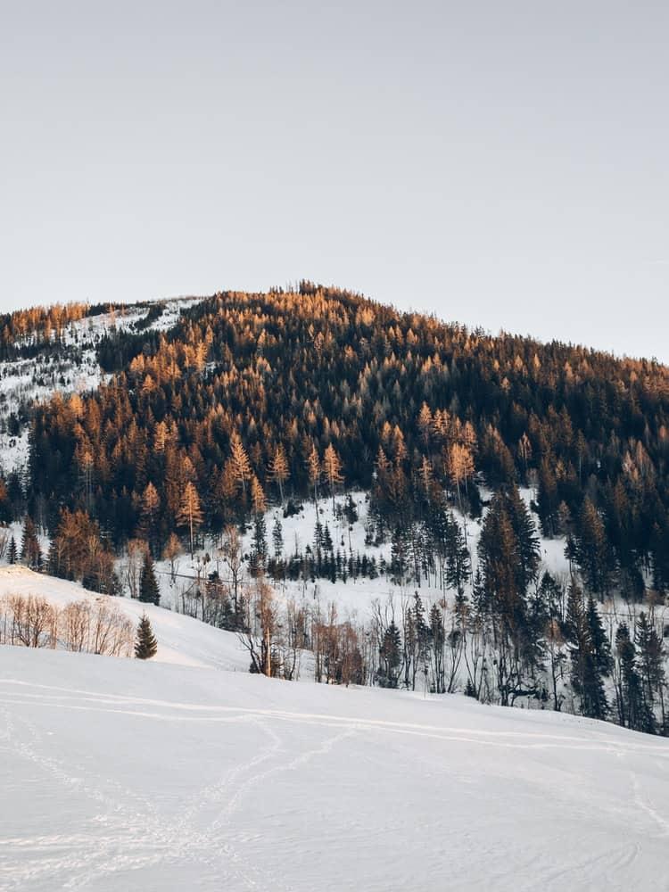 snowy hillside in Austria