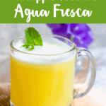 Pineapple Coconut Agua Fresca Pinterest Image top light green banner
