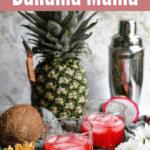 Bahama Mama Recipe top red banner