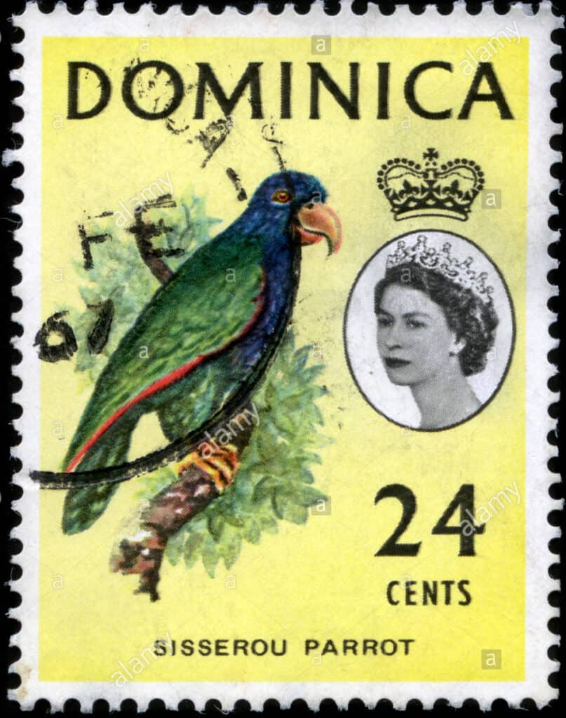 Stamp of Dominica featuring a parrot and queen with a tiara
