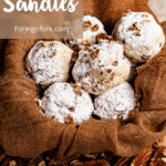 Pecan Sandies Pinterest Image Top Left Banner