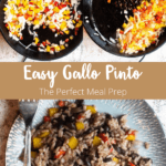 Gallo Pinto Pinterest Image Middle Banner