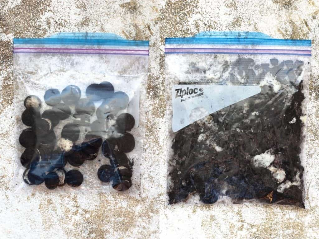 Collage of crushing oreos in a ziploc bag