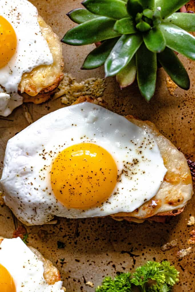 Croque Madame on a cookie sheet with a Cactus behind it