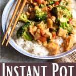Instant Pot Cashew Chicken Pinterest Image bottom design banner