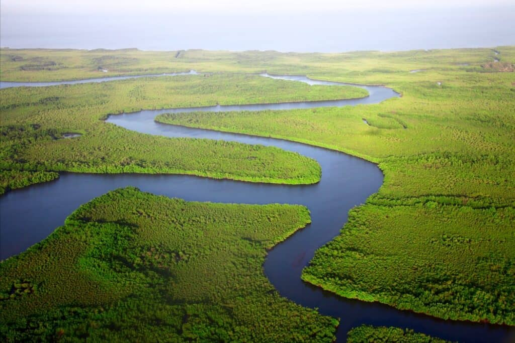 The Gambia river surrounded by lush land
