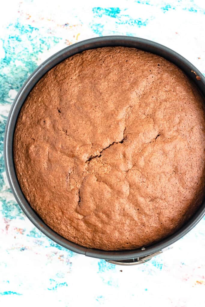 Cooked cake in a springform pan