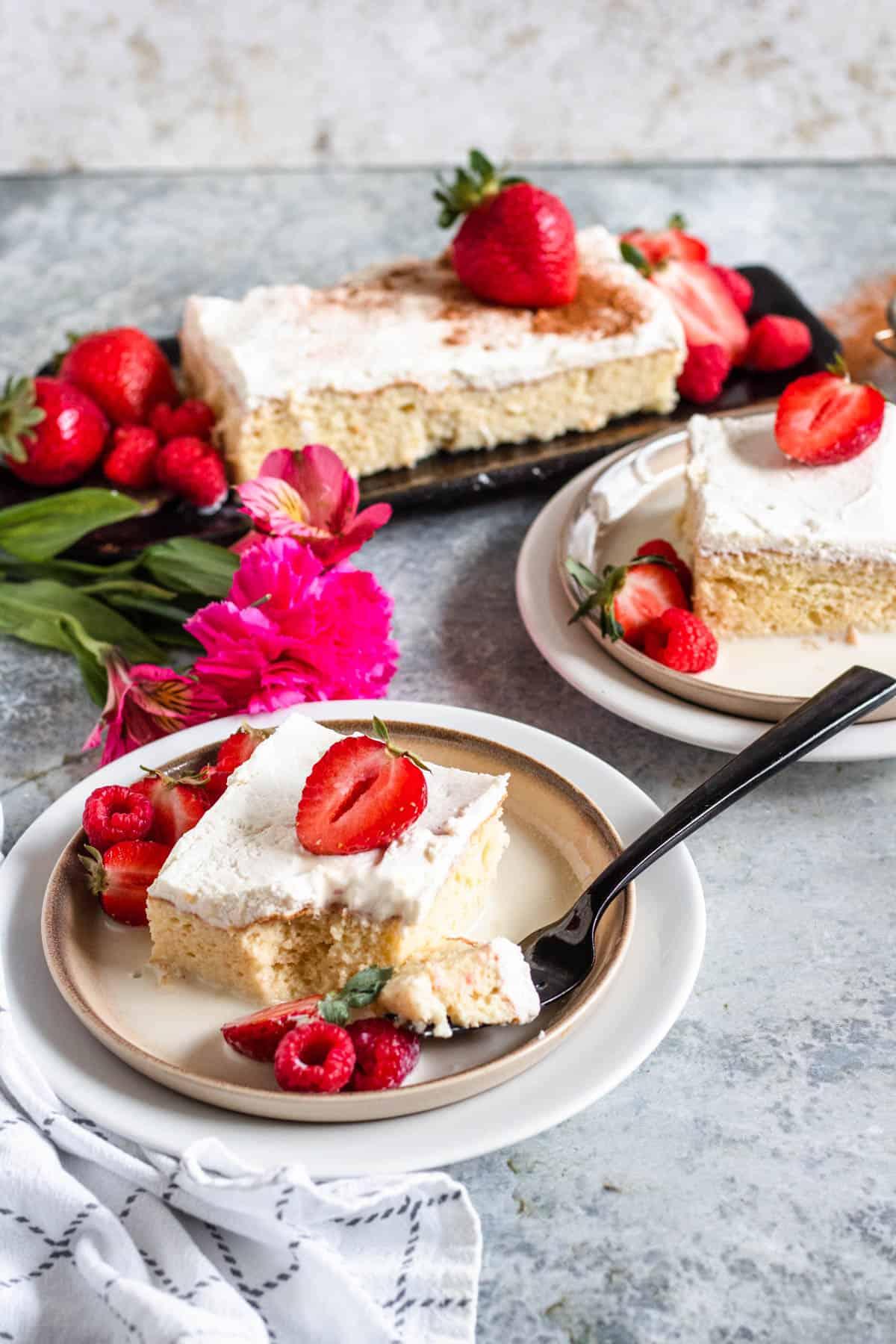 2 plates of cake